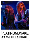 PLATINUMSNAKE as WHITESNAKE